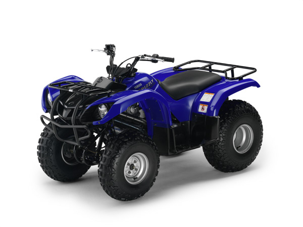 yamaha yfm 125 grizzly guide d 39 achat quad. Black Bedroom Furniture Sets. Home Design Ideas