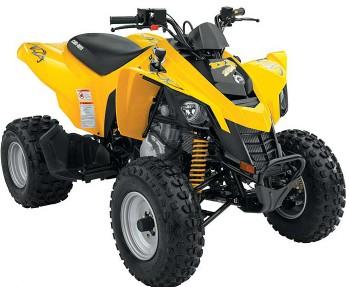 Avis quad CAN-AM DS 250