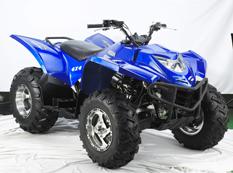 Avis quad HSUN 500 ATV