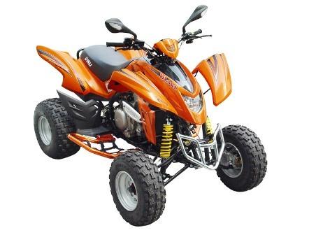 Avis quad DINLI DMX 450 HR 904