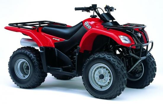 Avis quad Suzuki LT-F 250 M K6 Ozark