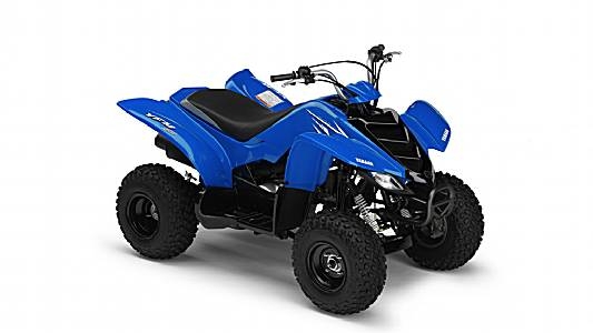 yamaha yfm 50 raptor guide d 39 achat quad. Black Bedroom Furniture Sets. Home Design Ideas
